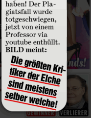 Screenshot Bild (e-paper), 23.05.2011